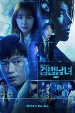 Partners for Justice (2019) Season 2 HardSub Indo